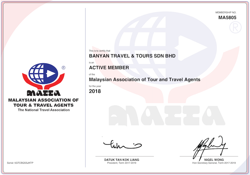 Your Trusted Travel Agent